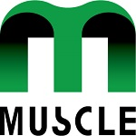 Muscle Corporation